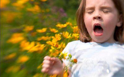 Beta Glucan Reduces Allergy Symptoms